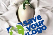 Save your logo